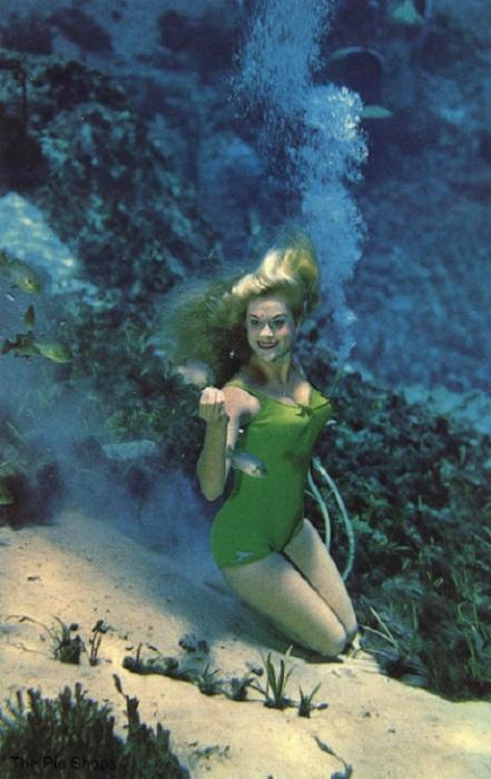 Это самое прекрасное подводное зрелище в мире.