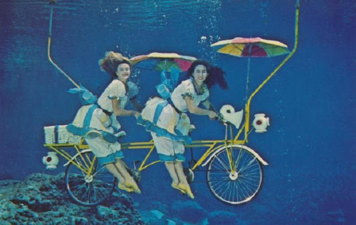 Велосипед для двоих был изготовлен для очередного представления.