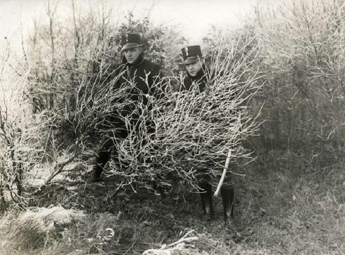 Сотрудники военной полиции, которые следят за акцией протеста против цыган. Нидерланды, 1928 год.
