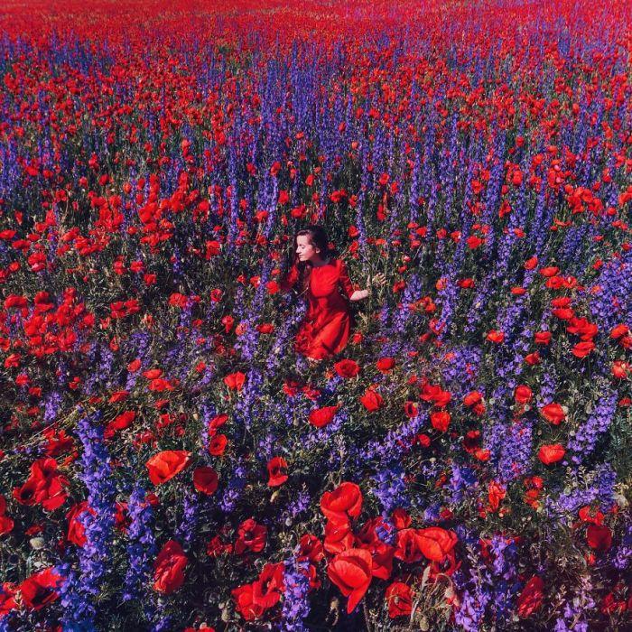 Вызывающе красное платье модели гармонично сочетается с фиолетовым цветом дельфиниума, выросшего среди макового поля, Крым.