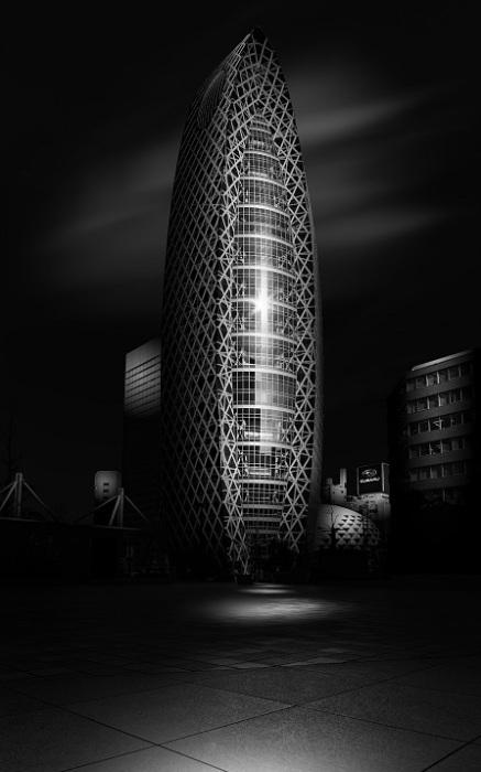 Наибольший рейтинг IVRPA получил снимок японского фотографа Наоки Фуджихара (Naoki Fujihara), на котором запечатлен небоскреб в Токио.