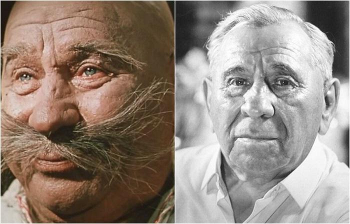 В фильме-сказке украинский советский актер сыграл роль знахаря-запорожца Пузатого Пацюка, который запомнился зрителям по сцене с поеданием вареников.