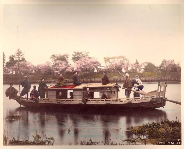 Прогулки по водоему во время цветения сакуры.