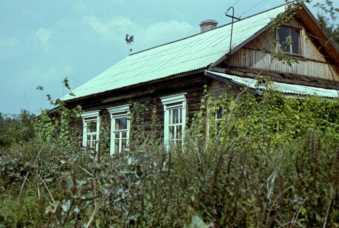 Петушок на крыше, исправно показывающий направление ветра.