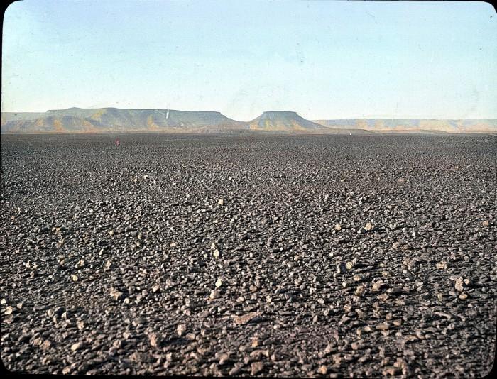 Ветра иссушают плато северного Алжира .