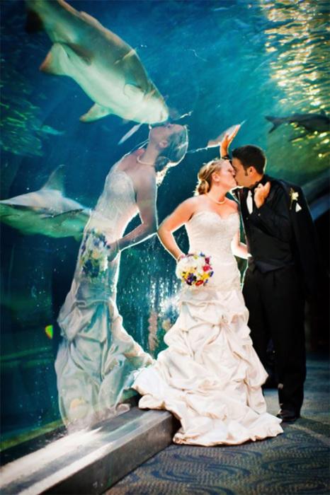 Невеста целуется с женихом, а в отражении видится совсем другое...