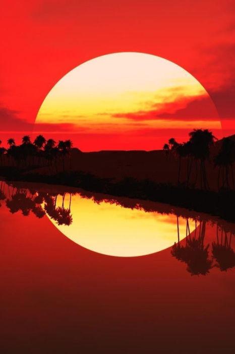 Красное солнце идеальной формы оповещает о закате дня в саванне.