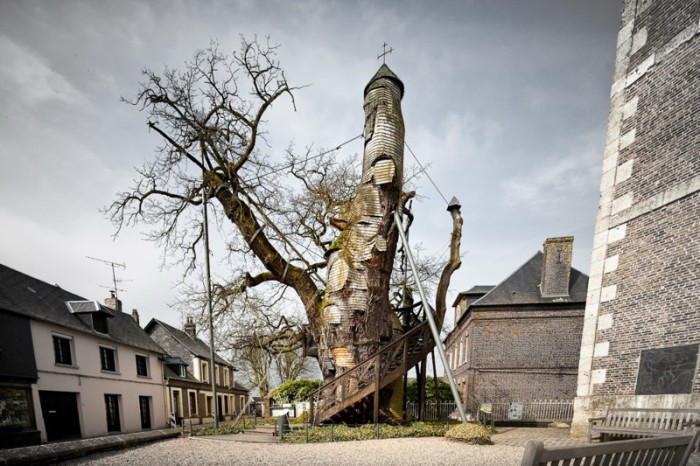 Тысячелетний дуб, внутри которого находится часовня, Франция.