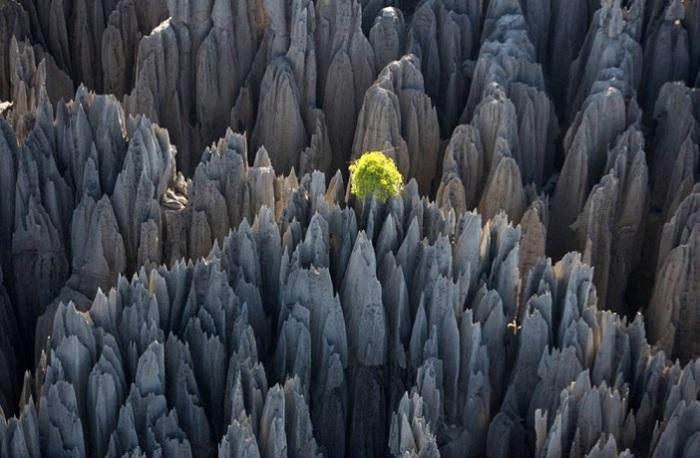 Единственное в своем роде образование из минералов на Мадагаскаре.