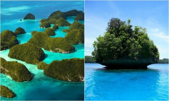 Густо заросшие тропической зеленью известняковые и коралловые острова возвышаются над морской гладью на 207 метров.