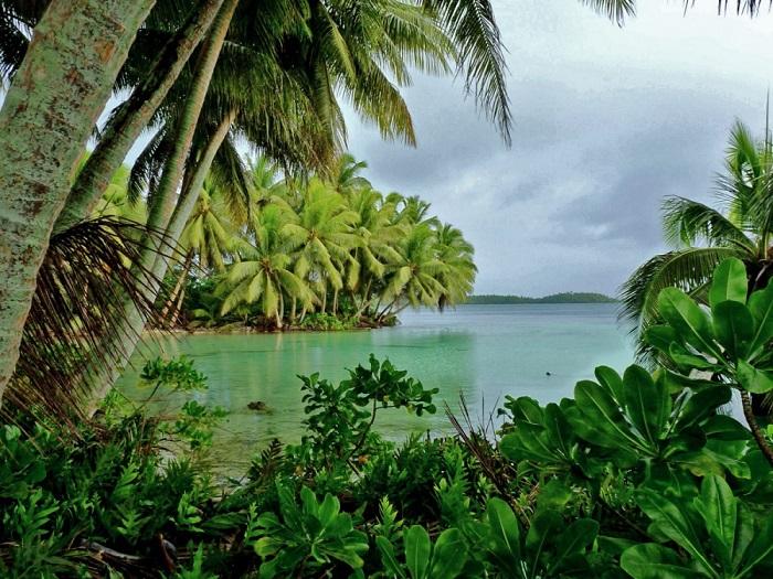 Наряду с Бермудским треугольником остров Пальмира одна из самых опасных аномальных зон Земли.