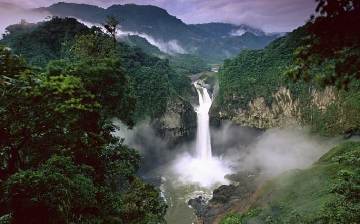 Обширный регион влажнотропических вечнозелёных широколиственных лесов.