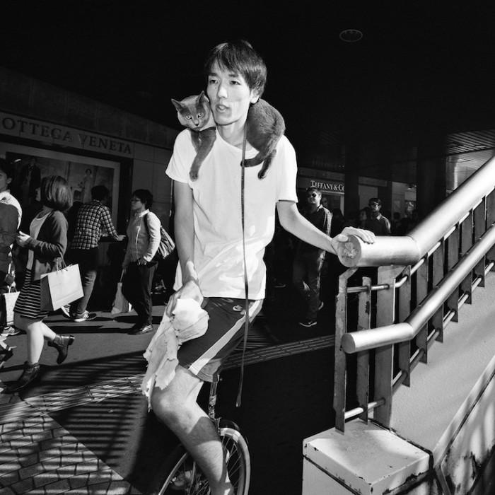 Молодой человек со своим четверолапым другом путешествуют улицами Токио.