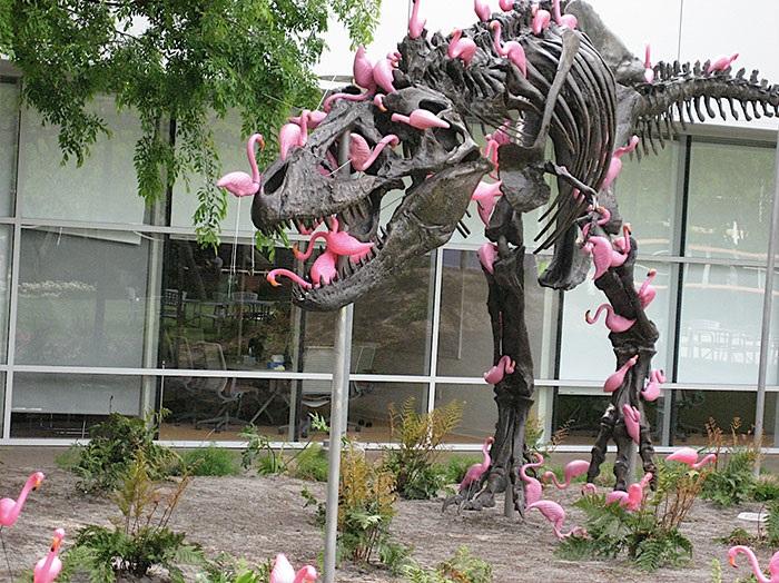 Стая голодных фламинго готова съесть и тиранозавра.