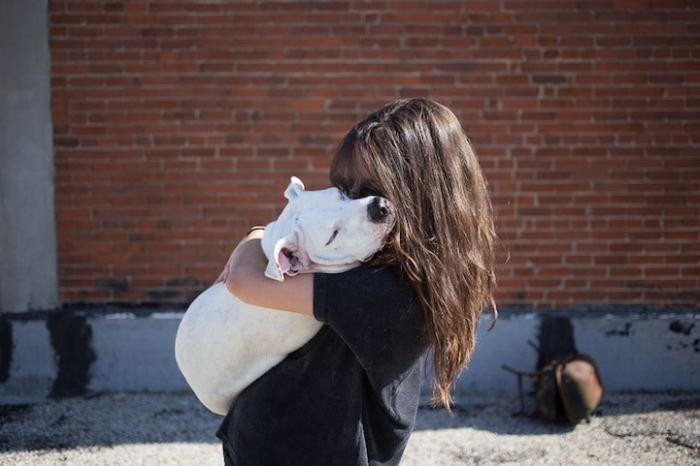 Невероятно, но многим собакам и кошкам фотографии действительно помогли обрести новый дом!