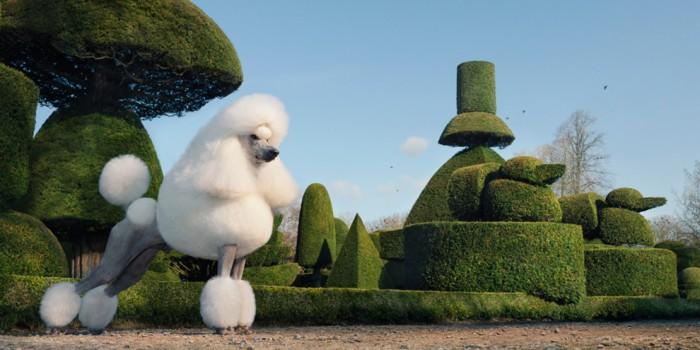Пудель в саду из фигурно подстриженных деревьев Левенс Холл в Кендале, графство Камбрия, Англия.