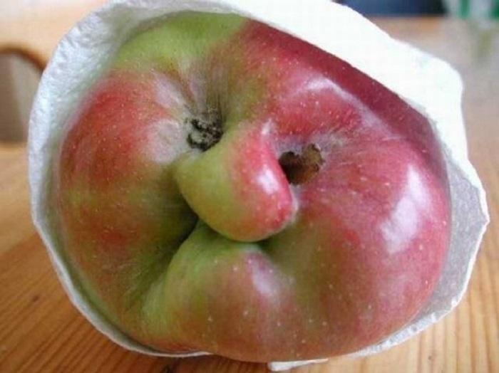 Яблоко корчащее рожицу.