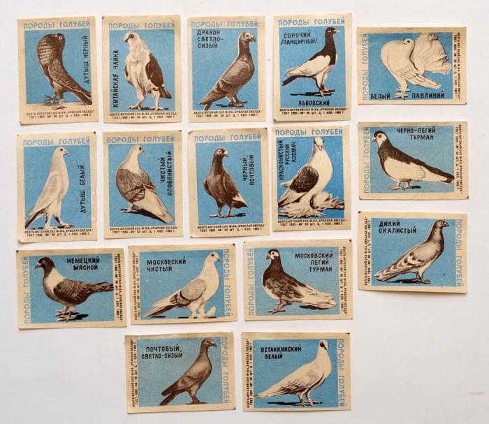 Коллекционное издание спичечных коробочек с изображением породы птиц.