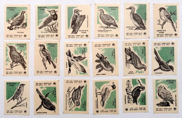 Пропаганда о сохранении и бережном отношении к птицам.