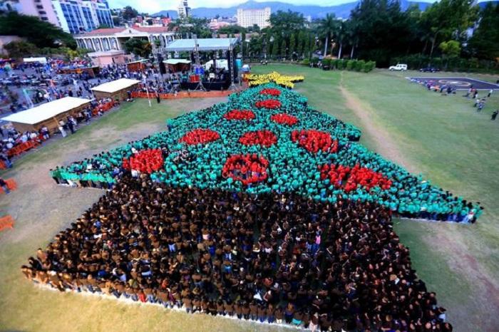Елка из почти 3 тысяч человек вошла в Книгу рекордов Гиннесса.
