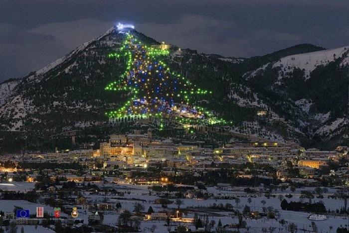 Елка более 650 метров, в 1991 году елка попала в Книгу рекордов Гиннесса.