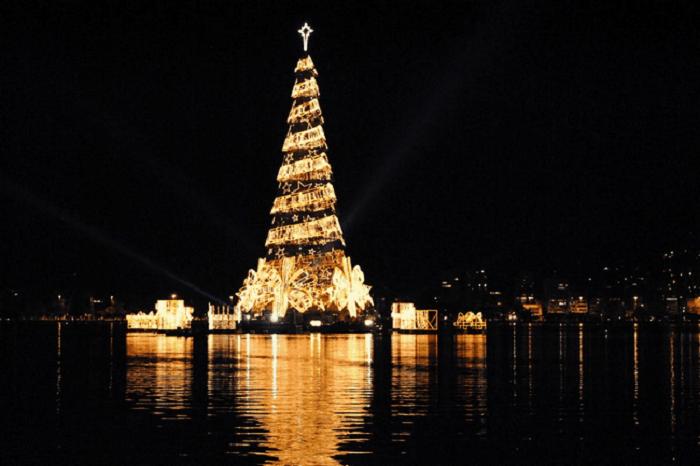 Плавающая рождественская елка.