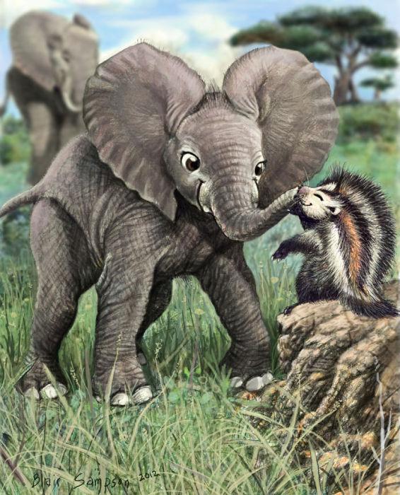 Слоненок играет со своим новым другом.