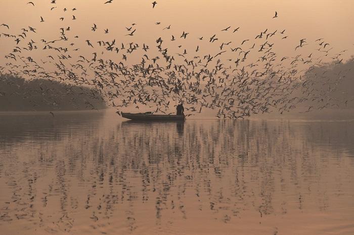 Туманное утро над священной рекой Джамна, почитаемой индуистами.
