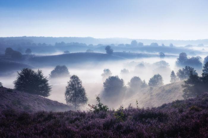 Низины утонувшие в тумане.