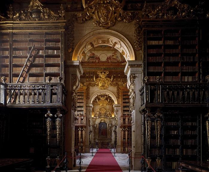 Одна из библиотек, где по ночам работают летучие мыши, защищая старинные книги и фолианты от насекомых-вредителей.