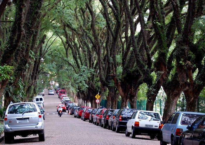 Одна из самых красивых улиц мира.