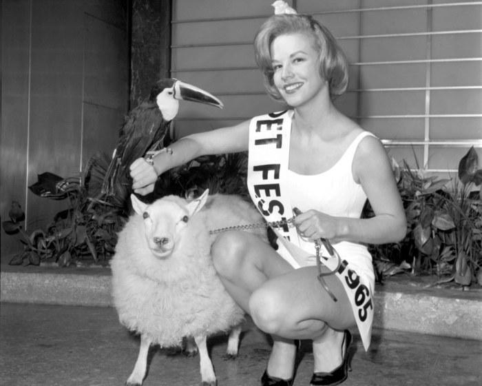 Санни Остин в окружении овцы, тукана и птенца.