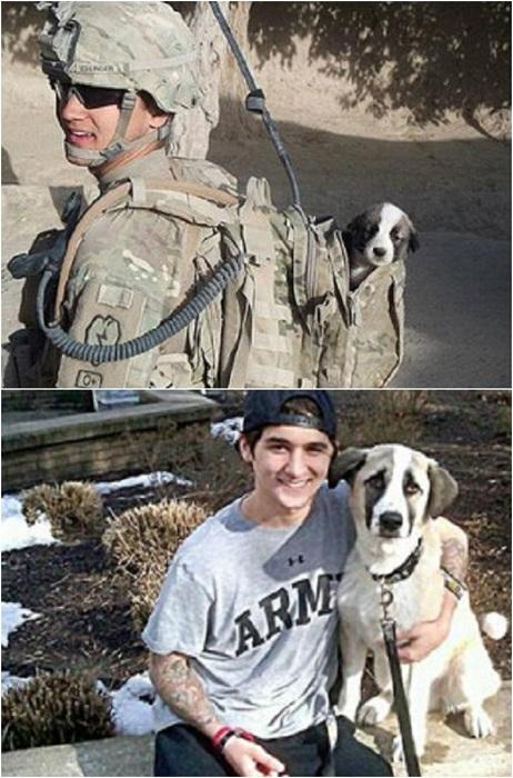Солдат спас щенка и они вместе уже 5 месяцев.
