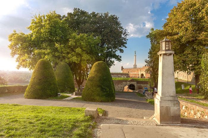 Незамысловатые деревья по-соседству с историческими столбами.