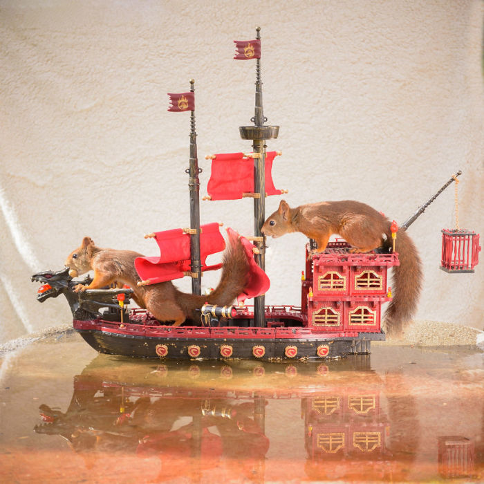 Стиль жизни одного из самых мощных флотов Вестероса, функционирующего на постоянной основе, основывается на пиратстве.