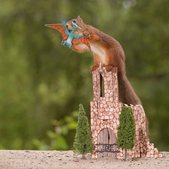 Вы бы тоже с воодушевлением защищали свой замок, в котором хранится запас драгоценных орехов!