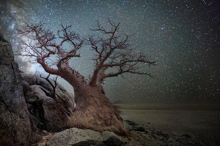 На создание серии фотографий «Бриллиантовые ночи » Бет Мун вдохновили научные исследования.