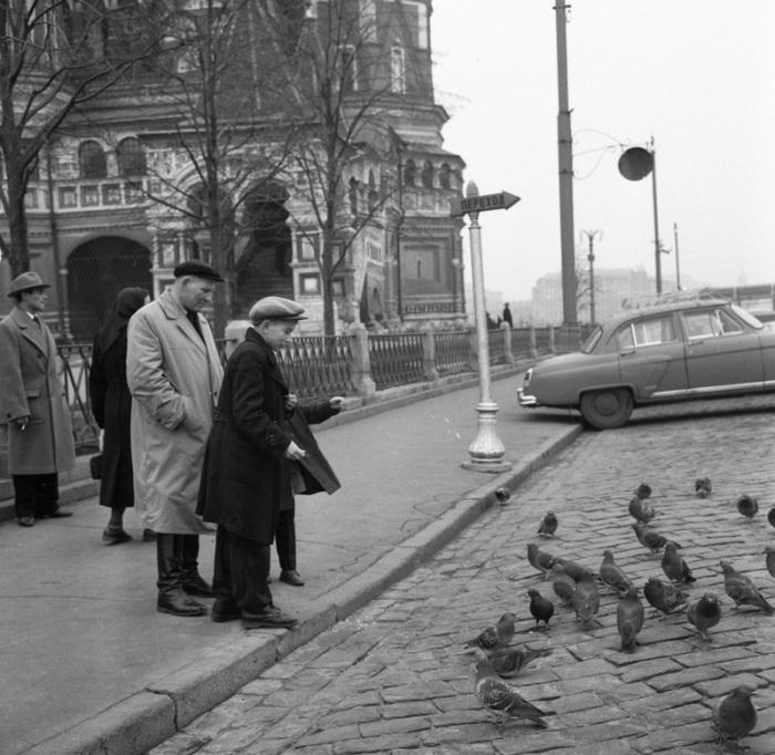 Кормление голубей во время прогулки, 1969 год.