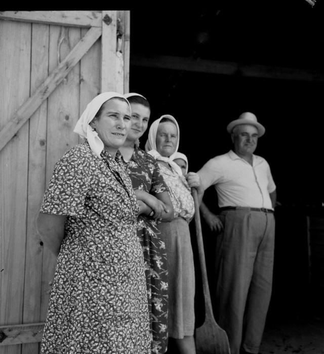 Небольшой перерыв на ферме, 1963 год.