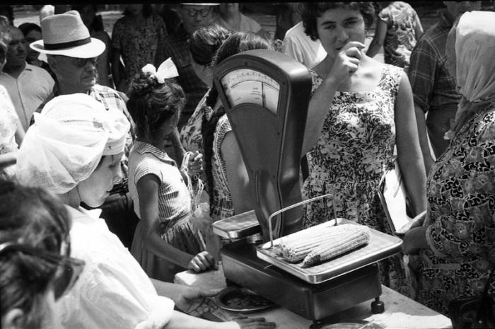Городской рынок, женщина покупает кукурузу, 1963 год.