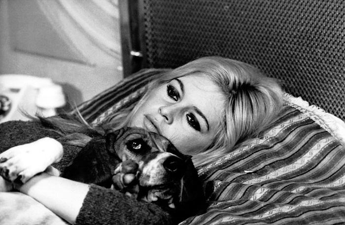 Брижит Бардо со своей собакой по кличке Свекла на съемках фильма «Знаменательный день» в октябре 1966 года.