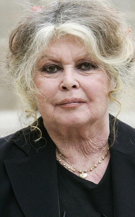 Бывшая актриса прибыла на встречу с президентом Франции в Елисейский дворец по вопросам окружающей среды в сентябре 2007 года.