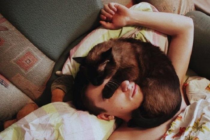 «Без кота жизнь не та».