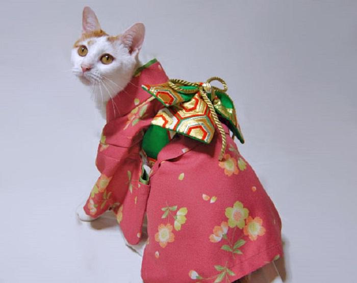 Вот, получила в подарочек национальный японский костюмчик...