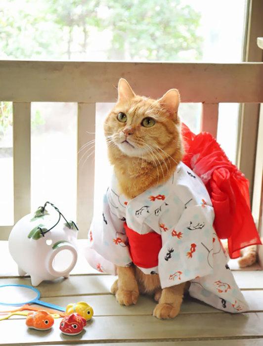 Рыжая красавица в халатике-кимоно.