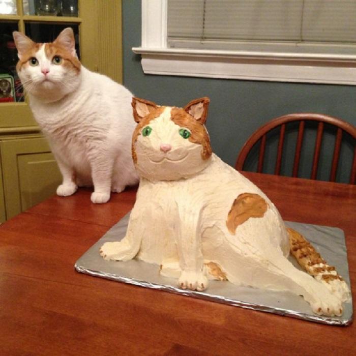 Знаю, что вы заказывали другой свадебный торт, но я новенький и смог сделать только такой.