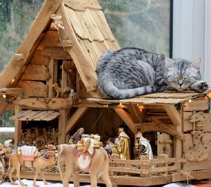 Кот не только прикоснулся к преданиям, но решил почувствовать себя их частью, вздремнув на крыше уютного домика.