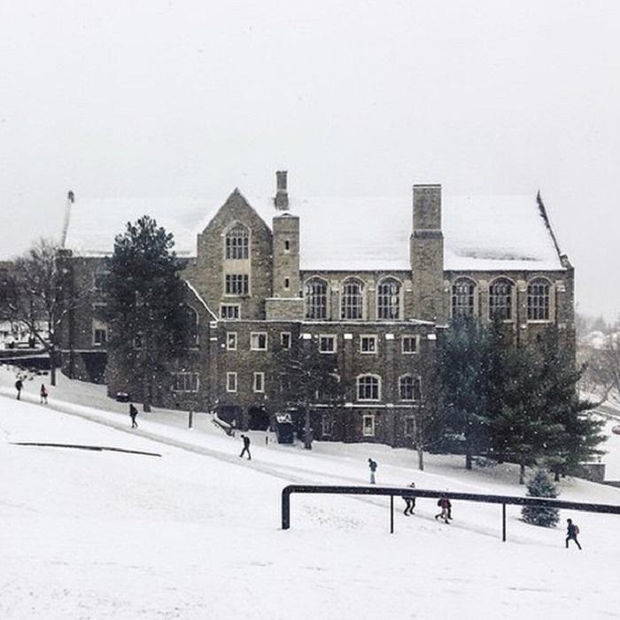 Один из самых крупных и знаменитых университетов США, входящий в элитную Лигу плюща.