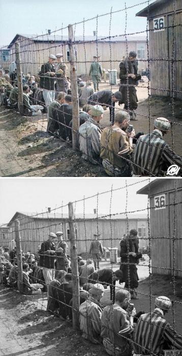 Освобождение узников лагеря Берген-Бельзен.  Апрель 1945 года.