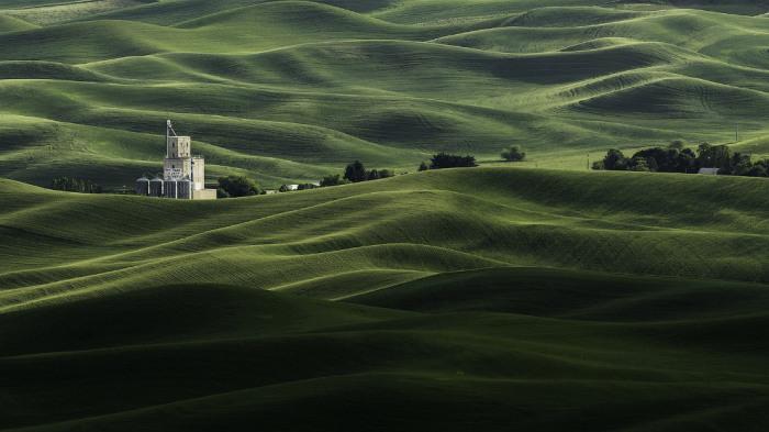 Текстуры полей в штате Вашингтон. Фотограф Хамиш Митчел (Hamish Mitchell).